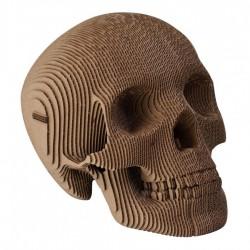 CARDBOARD - Micro VINCE Cardboard Human Skull BROWN