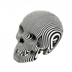 CARDBOARD - Micro VINCE Cardboard Human Skull ZEBRA
