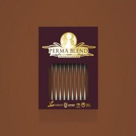 Perma Blend - Burnt Sienna Monodose 1pz - 3ml