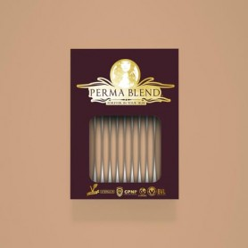 Perma Blend - Cafe Cream Monodose 1pz - 3ml