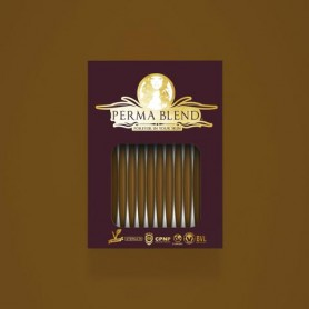 Perma Blend - Martini Olive Monodose 1pz - 3ml
