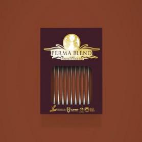 Perma Blend - Terra Cotta Monodose 1pz - 3ml