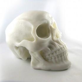 Silicon Skull white
