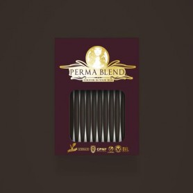Perma Blend - Coal Monodose 1pz - 3ml