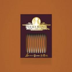 Perma Blend - Amber  Monodose 10pz - Sopracciglia