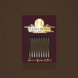 Perma Blend - Fudge Monodose 10pz - Sopracciglia