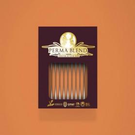 Perma Blend - Apricot Monodose 10pz - Sopracciglia