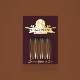 Perma Blend - Burnt Sienna Monodose 10pz - Sopracciglia