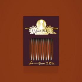 Perma Blend - Pumpkin Monodose 10pz - Labbra