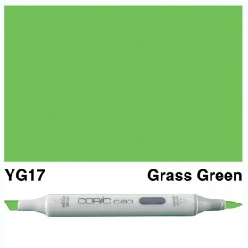YG17 Copic Ciao Grass Green
