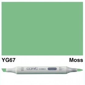 YG67 Copic Ciao Moss